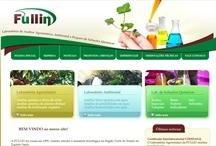 Fullin: Website criado pela ALDABRA