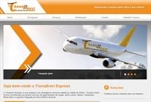 Transbravi: Website criado pela ALDABRA