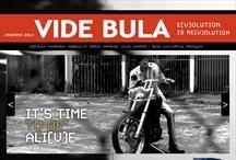 Videbula: Website criado pela ALDABRA