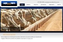 Laço Forte: Website criado pela ALDABRA