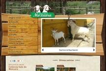 Estância do Vale do Moxuara: Website criado pela ALDABRA