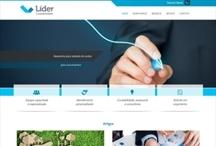 Líder Contabilidade: Website criado pela ALDABRA