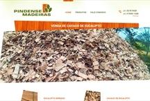 Pindense: Website criado pela ALDABRA